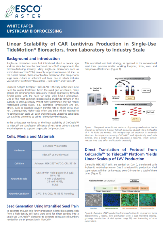 Linear Scalability of CAR Lentivirus Production