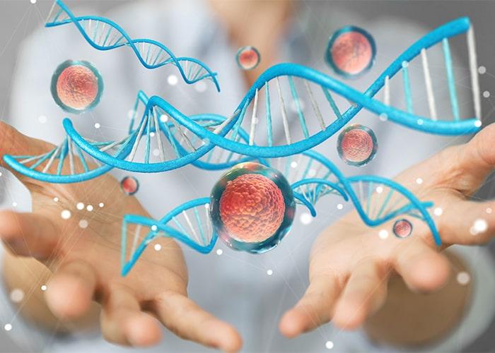 Tide Motion® Bioreactors in Cell Culture Applications